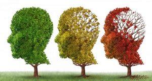 अल्जाइमर जैसी खतरनाक बीमारी में अंगूर है बहुत ही कारगर , Alzheimer jaisi khatarnaak bimari mein angoor hai bahut hi kaargar