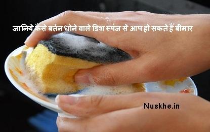 जानिये कैसे बर्तन धोने वाले डिश स्पंज से आप हो सकते हैं बीमार, Know How Dish Sponge Can Make You Sick