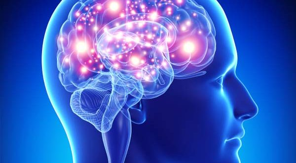 Top 10 Ways to Improve Your Brain Power while using Ayurvedic treatment