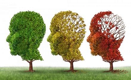 Alzheimer jaisi khatarnaak bimari mein angoor hai bahut hi kaargar